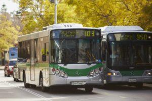 Buses at QEIIMC